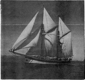 edna-in-full-sail
