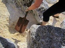 Andrea digging